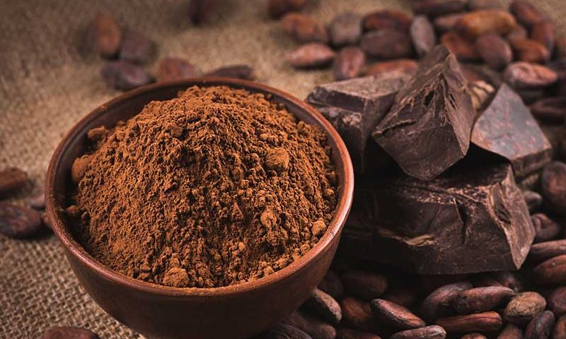 Health Benefits of Raw Chocolate | Ana Heart Blog