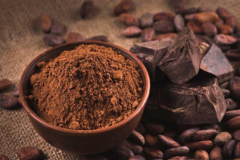 Health Benefits of Raw Chocolate | Ana Heart Blog
